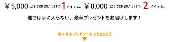 ¥5,000以上のお買い上げで1アイテム、¥8,000以上のお買い上げで2アイテム、他では手に入らない豪華プレゼントをお届けします!